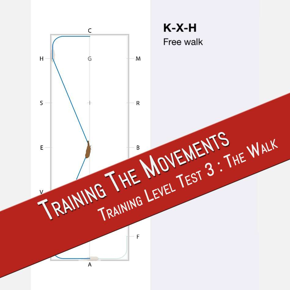 THE WALK: TRAINING LEVEL 3