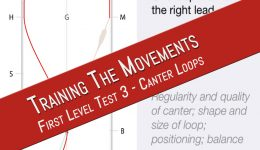 First level test 3 canter loops