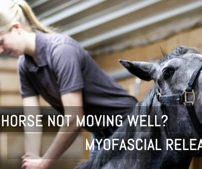 Myofascial featured