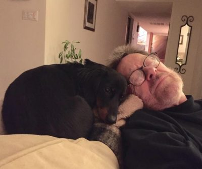 Lisa's husband and dachshunds dreaming about her gourmet cooking