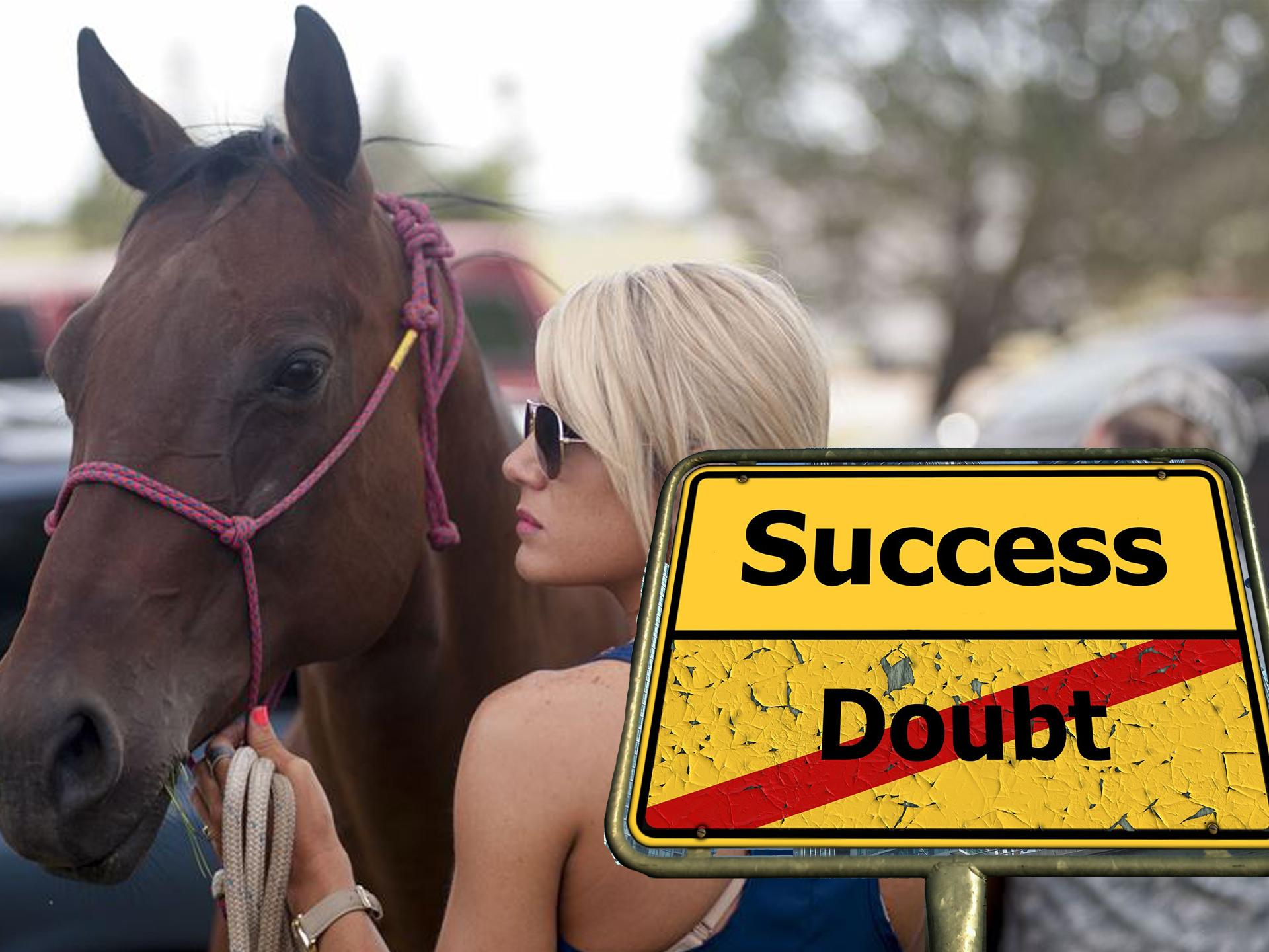 successdoubt